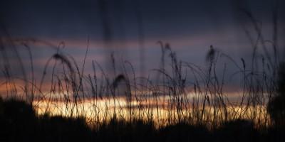 Sunset Durham